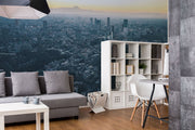 Japan Cityscape Wall Mural-Black & White,Buildings & Landmarks,Cityscapes,Urban-Eazywallz