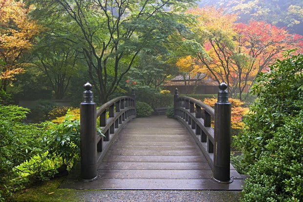 Japanese Wooden Bridge wall Mural Wall Mural-Zen,Landscapes & Nature-Eazywallz