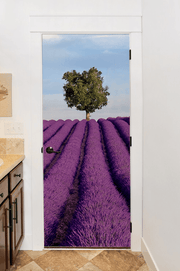 Lavender Field in France Door Mural-Florals,Macro-Eazywallz