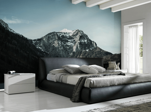 Mountain View Wall Mural-Landscapes & Nature-Eazywallz