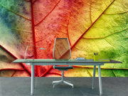 Multicolor leaf Wall Mural-Macro,Textures-Eazywallz