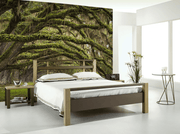 Oak Tree Forest Wall Mural-Landscapes & Nature-Eazywallz