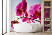 Orchid on a blue sky Wall Mural