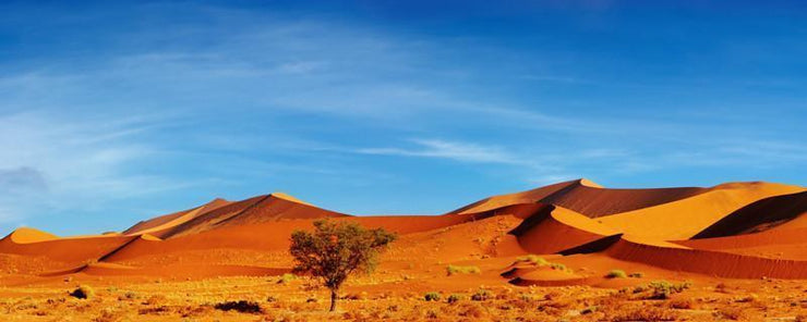 Panorama of the Namib Desert Wall Mural-Landscapes & Nature,Panoramic-Eazywallz