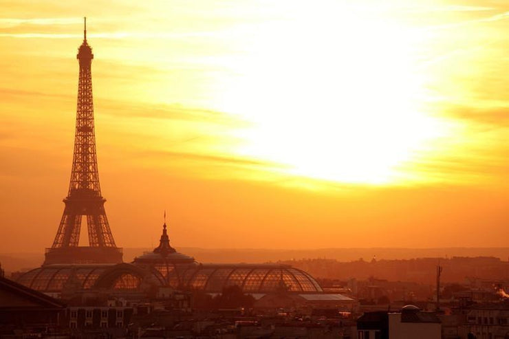 Paris at sunset Wall Mural-Buildings & Landmarks,Cityscapes,Landscapes & Nature-Eazywallz