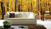 Path in Autumn Park Wall Mural-Landscapes & Nature,Panoramic-Eazywallz