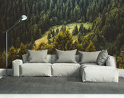 Pine Forest View Wall Mural-Landscapes & Nature-Eazywallz