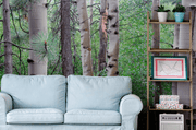 Pine Forest Wall Mural-Landscapes & Nature-Eazywallz