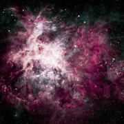 Pink Cosmos Wall Mural-Space-Eazywallz