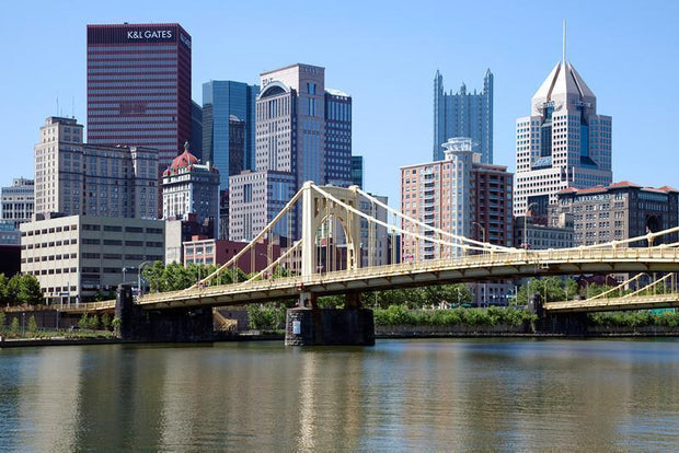 Pittsburgh Skyline Wall Mural-Cityscapes-Eazywallz