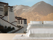 Potala Palace in Lhasa, Tibet Wall Mural-Buildings & Landmarks,Landscapes & Nature-Eazywallz