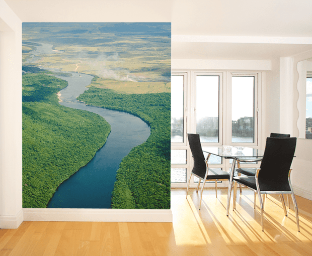 River Flow in Venezuela Wall Mural-Landscapes & Nature-Eazywallz