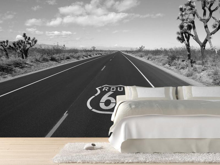Route 66 crossing Mojave desert Wall Mural-Buildings & Landmarks,Landscapes & Nature-Eazywallz