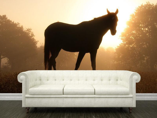 Silhouette of an Arabian Horse Wall Mural-Animals & Wildlife-Eazywallz
