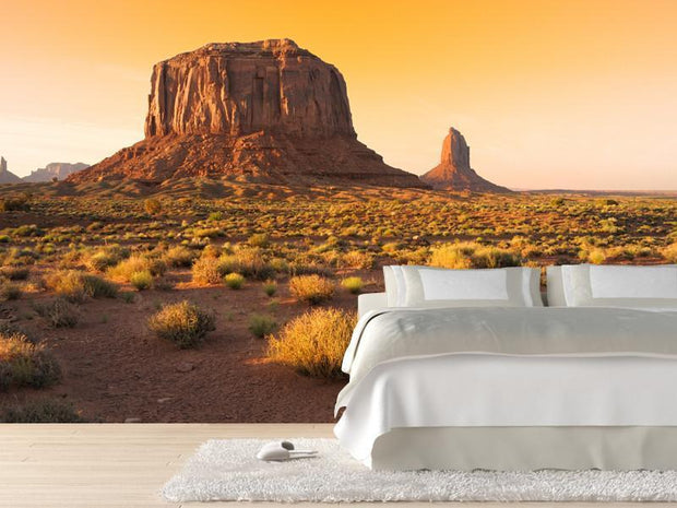 Sunset at the Monument Valley, USA Wall Mural-Buildings & Landmarks,Landscapes & Nature-Eazywallz