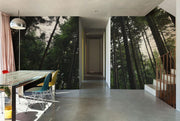Tall Tree Forest Wall Mural-Landscapes & Nature-Eazywallz