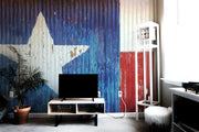 Texas Painted Barn Wall Mural-Arts-Eazywallz