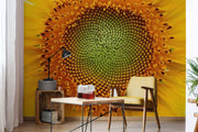 Shining Sunflower Wallpaper Mural
