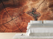 Tree ring texture Wall Mural-Textures-Eazywallz