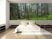 Washington National Park Rain Forest Wall Mural-Landscapes & Nature,Panoramic-Eazywallz