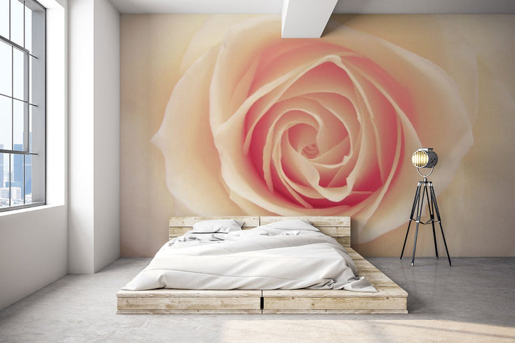 Blushing Rose Wallpaper Mural