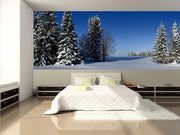 Winter Forest Panoramic Wall Mural-Landscapes & Nature,Panoramic-Eazywallz