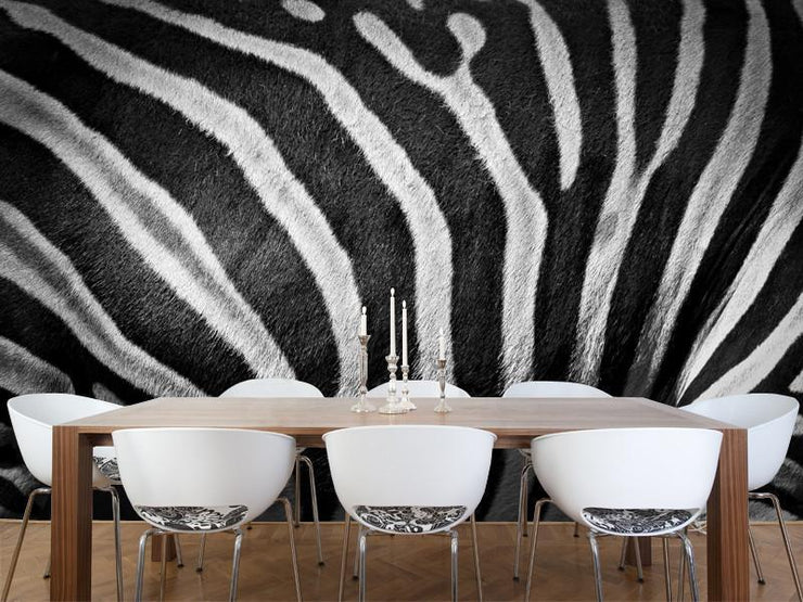 Zebra stripes Wall Mural-Animals & Wildlife,Black & White,Textures,Staff Favourite Murals-Eazywallz