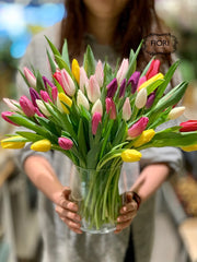 Tulip arrangement. Order and send flowers online for every occasion delivery in Oakville, Burlington, Mississauga, Milton, Etobicoke, Toronto and Hamilton Greater area. Full service flower store voted best florist.