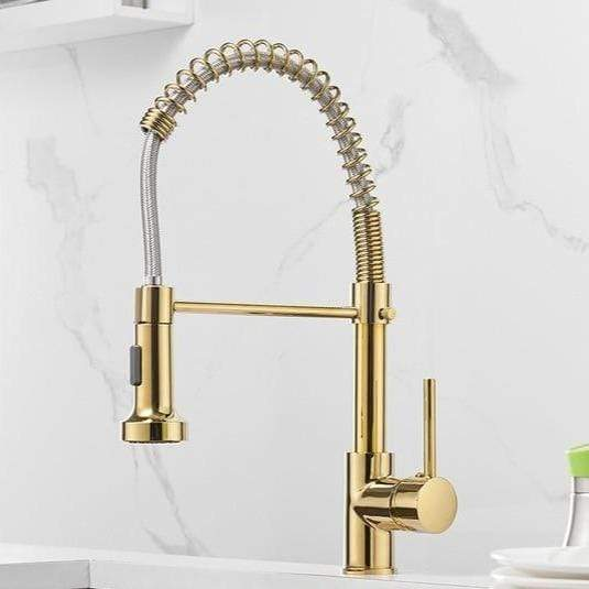 Leuca Pull Out Spring Spout Kitchen Faucet