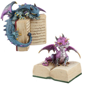 Fantasy Dragon on Book