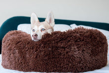 Load image into Gallery viewer, MONTEES - Brown Fluffy Round Donut Dog Bed