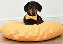 Load image into Gallery viewer, MACARON MELLOW YELLOW - Round Pebble Dog Bed