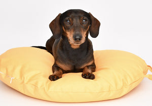 MACARON MELLOW YELLOW - Round Pebble Dog Bed