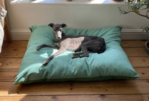 ESMERALDA - Two Tone Suede Dog Cushion Bed