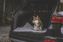 Load image into Gallery viewer, MURPHY - Fold Up Travel Dog Bed