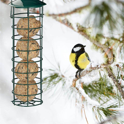 Fat ball Bird Feeder