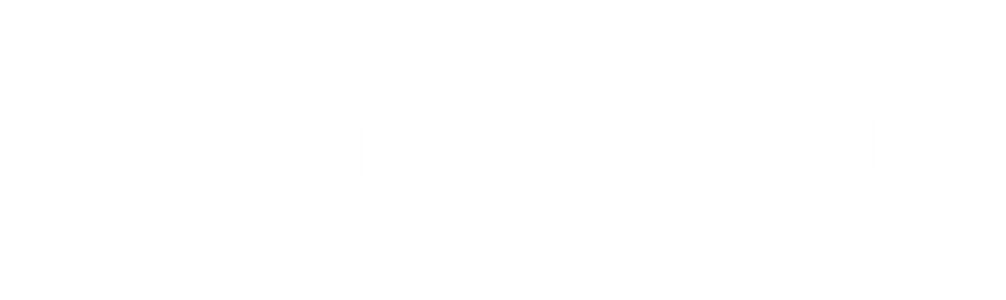 Big Wild Official Store logo