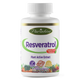 Paradise Herbs Resveratrol with Ginger – 60 Vegetarian Capsules