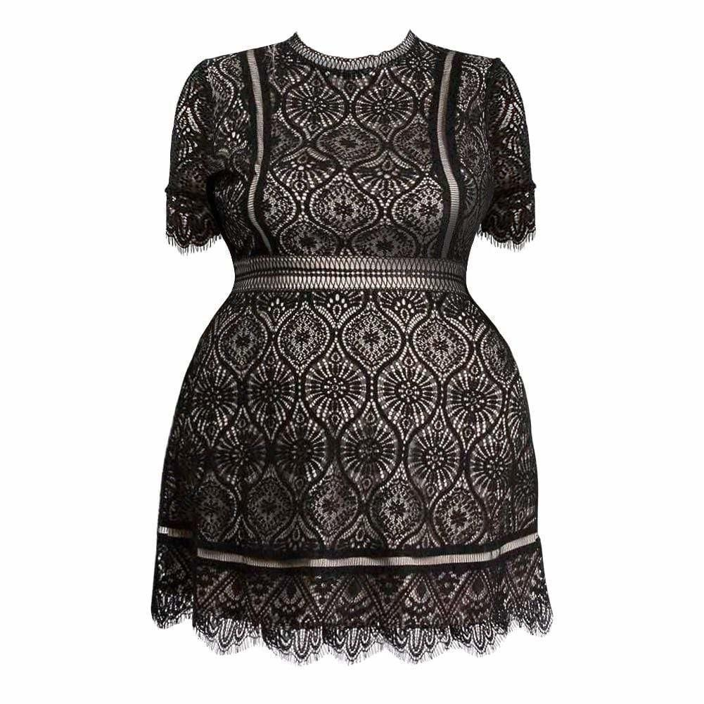 Posh Shoppe: Plus Size Lace Mini Dress, Black Dress