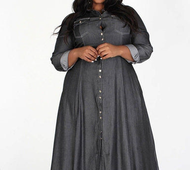 Posh Shoppe: A-line Long Sleeve Denim Maxi Dress Dress