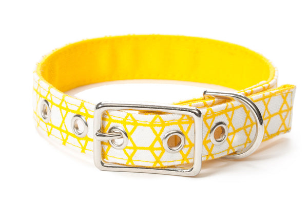 The Billyburg Bridge Canvas Dog Collar - Lavish Tails