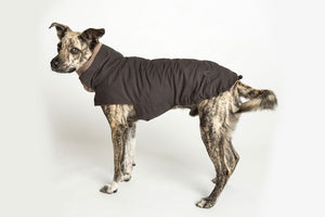 DOG COAT BROOKLYN WATERPROOF GRAPHITE - Lavish Tails