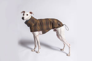 DOG COAT BROOKLYN WATER REPELLENT WAXED TARTAN - Lavish Tails