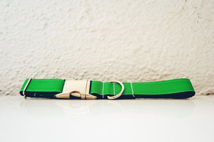 The Colorado Springs Dog Collar - Lavish Tails