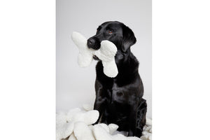 LOVE BONE NATURE WHITE PLUSH - Lavish Tails