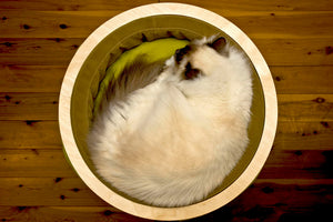 Uno Box Feline Bed & Storage - Lavish Tails