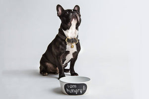 DOG BOWL CHALK WHITE - Lavish Tails