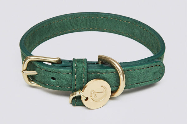 DOG COLLAR TIERGARTEN PARK GREEN - Lavish Tails
