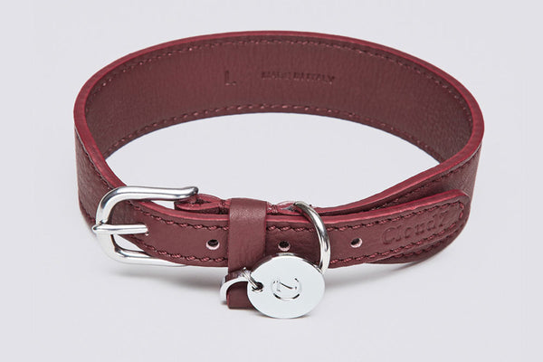 DOG COLLAR VONDELPARK BURGUNDY - Lavish Tails
