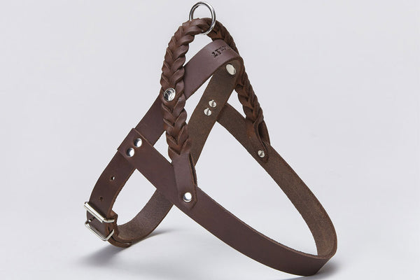 HARNESS CENTRAL PARK SADDLE BROWN - Lavish Tails